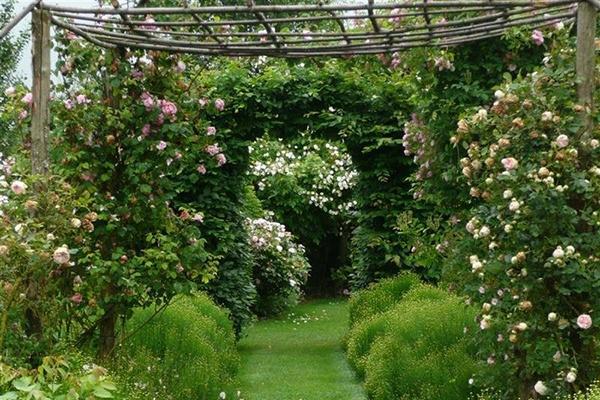 Le jardin romantique