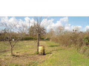Terrain à vendre à Balzac (16430)<span class='prix'> 29000 €</span> 29000