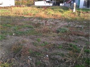 Terrain à vendre à Hilsenheim (67600)<span class='prix'> 67800 €</span> 67800