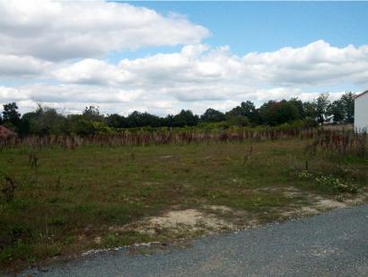 Terrain à vendre  à  Saint-Martin-des-Noyers (85140)  - 28437 € * : photo 1