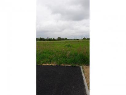 Terrain à vendre  à  Châteauneuf (85710)  - 47690 € * : photo 1