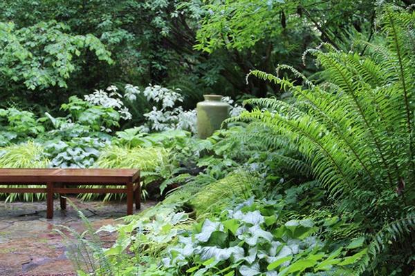 Le jardin de sous-bois