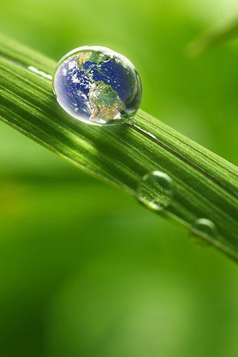 Conseils pour économiser l'eau par les Maisons Bernard Jambert