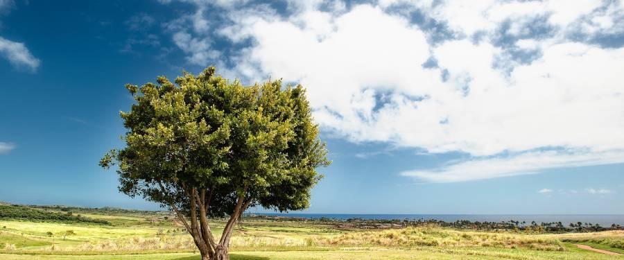 Le choix de votre terrain constructible avec Azur & Constructions