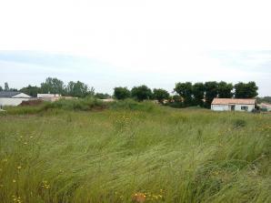Terrain à vendre à Cholet (49300)<span class='prix'> 50500 €</span> 50500