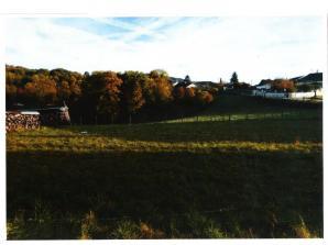 Terrain à vendre à Saint-Martin-du-Mont (01160)<span class='prix'> 80000 €</span> 80000