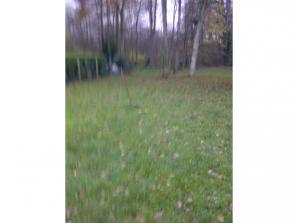 Terrain à vendre à Boissy-la-Rivière (91690)<span class='prix'> 85000 €</span> 85000