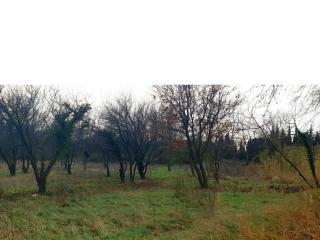Terrain d'exception sur La Barben (13330) ! A Saisir