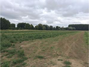 Terrain à vendre à Aire-sur-la-Lys (62120)<span class='prix'> 59300 €</span> 59300