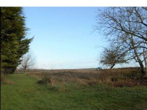Terrain à vendre à Mouthiers-sur-Boëme (16440)<span class='prix'> 42000 €</span> 42000