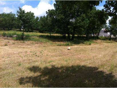 Terrain à vendre  à  Forcalquier (04300)  - 109500 € * : photo 2