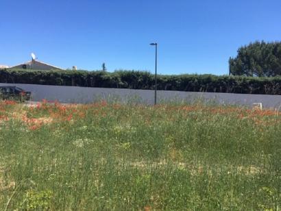 Terrain à vendre  à  Vinon-sur-Verdon (83560)  - 130000 € * : photo 2