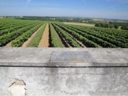 Terrain à vendre  à  Hiersac (16290)  - 52800 € * : photo 3