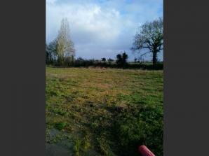 Terrain à vendre à Challans (85300)<span class='prix'> 59400 €</span> 59400