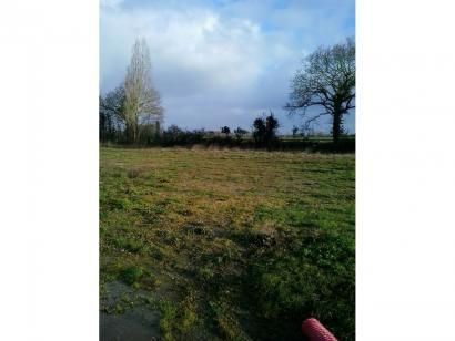 Terrain à vendre  à  Challans (85300)  - 59400 € * : photo 1