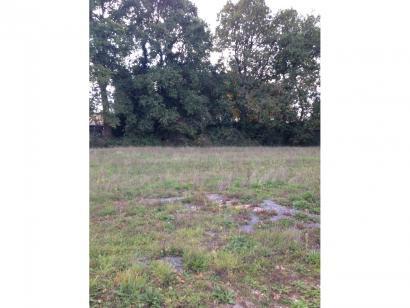Terrain à vendre  à  Challans (85300)  - 58900 € * : photo 1