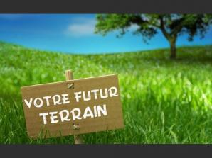 Terrain à vendre à Saint-Roch (37390)<span class='prix'> 100000 €</span> 100000
