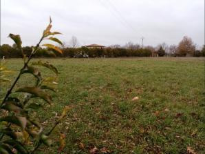 Terrain à vendre à Martres-Tolosane (31220)<span class='prix'> 40000 €</span> 40000