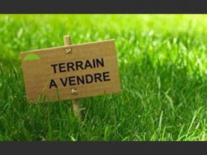 Terrain à vendre à Noizay (37210)<span class='prix'> 43500 €</span> 43500