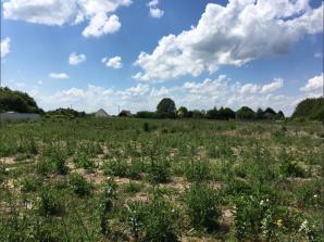 Terrain à vendre à Azay-sur-Cher (37270)<span class='prix'> 65000 €</span> 65000