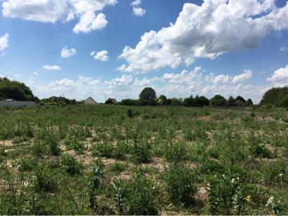 Terrain à vendre  à  Azay-sur-Cher (37270)  - 65000 € * : photo 1