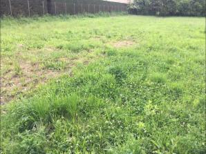 Terrain à vendre à Bohas-Meyriat-Rignat (01250)<span class='prix'> 65000 €</span> 65000