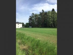 Terrain à vendre à Condé-Northen (57220)<span class='prix'> 70800 €</span> 70800