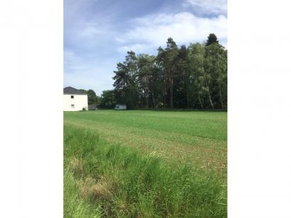 Terrain à vendre  aux  Étangs (57530)  - 73000 € * : photo 1