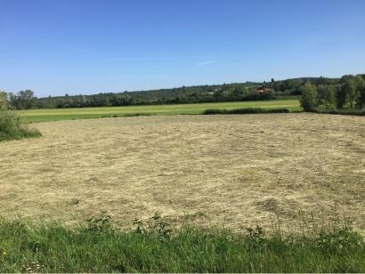 Terrain à vendre  à  Courcelles-Chaussy (57530)  - 48500 € * : photo 1