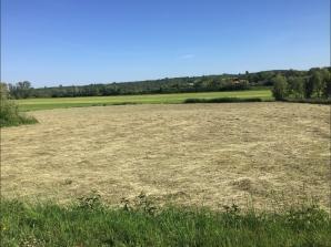 Terrain à vendre à Silly-sur-Nied (57530)<span class='prix'> 73000 €</span> 73000