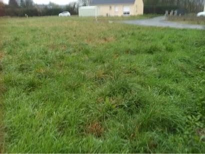 Terrain à vendre  à  Beaufort-en-Vallée (49250)  - 45000 € * : photo 1