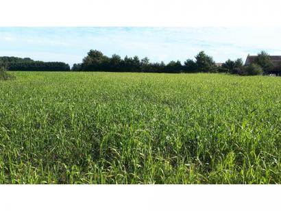 Terrain à vendre  à  Durtal (49430)  - 24350 € * : photo 1