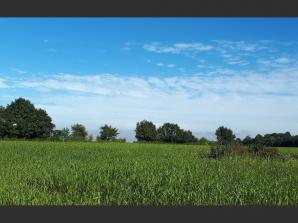 Terrain à vendre à La Chapelle-d'Aligné (72300)<span class='prix'> 22100 €</span> 22100