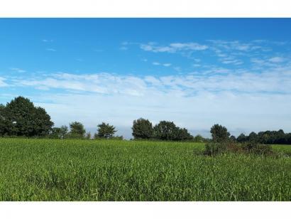 Terrain à vendre  à  La Chapelle-d'Aligné (72300)  - 22100 € * : photo 1