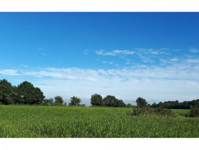 Terrain à vendre  à  La Chapelle-d'Aligné (72300)  - 22250 € * : photo 1