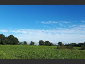 Terrain à vendre à La Chapelle-d'Aligné (72300)<span class='prix'> 27000 €</span> 27000