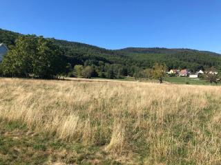 Terrain à bâtir à Wintzfelden (68570)