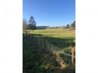 Terrain à vendre  à  Puttelange-lès-Thionville (57570)  - 175000 € * : photo 1