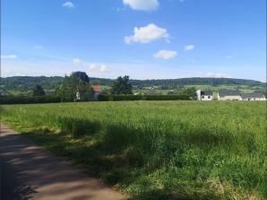 Terrain à vendre à Gorcy (54730)<span class='prix'> 86000 €</span> 86000