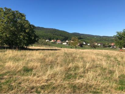 Terrain à vendre  à  Soultzmatt (68570)  - 102 480 € * : photo 2