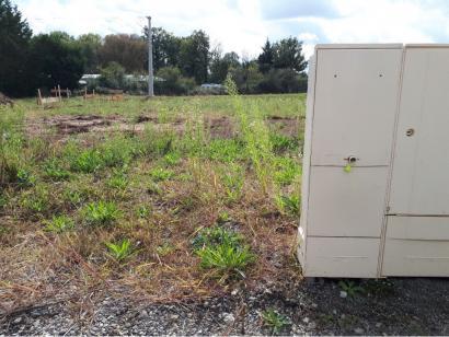 Terrain à vendre  à  Beaufou (85170)  - 38500 € * : photo 1