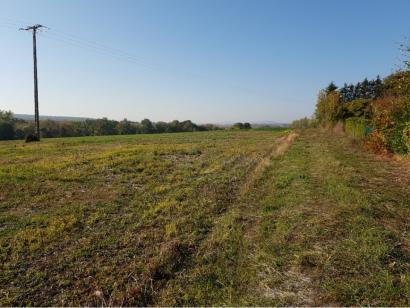 Terrain à vendre  à  Pommérieux (57420)  - 83270 € * : photo 2