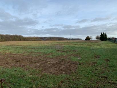 Terrain à vendre  à  Metzeresche (57920)  - 97500 € * : photo 1