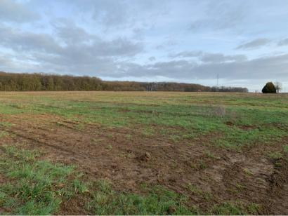 Terrain à vendre  à  Metzeresche (57920)  - 97500 € * : photo 3