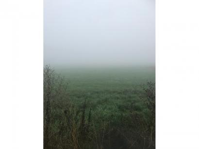 Terrain à vendre  à  Trieux (54750)  - 65165 € * : photo 1