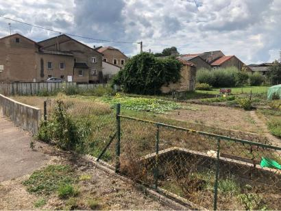Terrain à vendre  à  Halstroff (57480)  - 49000 € * : photo 1