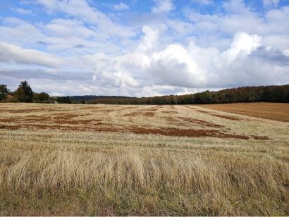 Terrain à vendre  à  Amnéville (57360)  - 85000 € * : photo 1