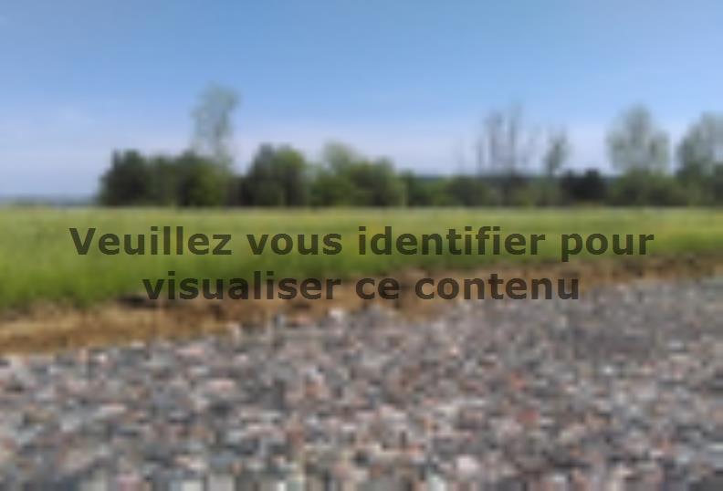 Terrain à vendre Les Étangs88280 € * : vignette 3