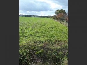 Terrain à vendre à Landeronde (85150)<span class='prix'> 61100 €</span> 61100