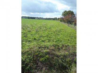 Terrain à vendre  à  Landeronde (85150)  - 61100 € * : photo 1